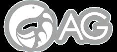 AG Consultoría Digital